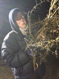 Claire Finn prepares for some arboreal lighting action. Photos: Miriam Spring Davies